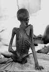 Hunger, hunger